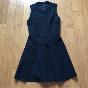 NWOT Madewell Fit and Flair Dress